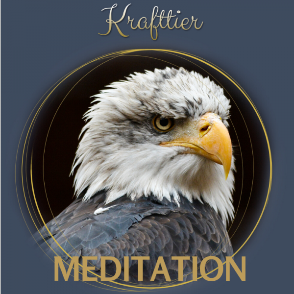 Krafftier Meditation