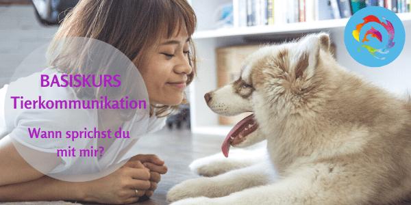 Basis Seminar Tierkommunikation – Online